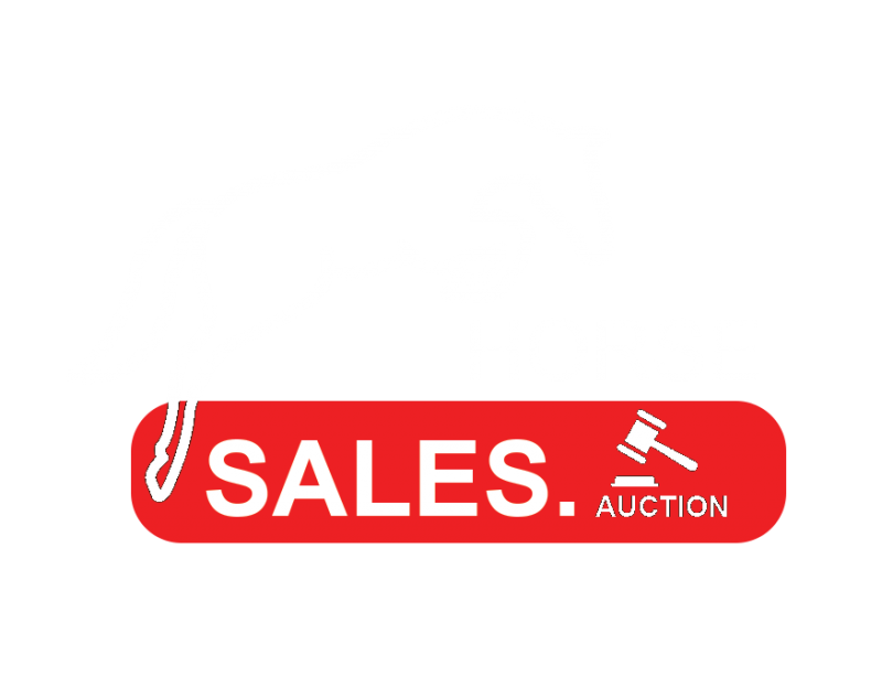HORSE SALES. AUCTION